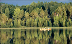 prince-albert-forested-lakeshore-with-canoers
