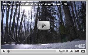 winter-in-prince-albert-national-park-saskatchewan-canada