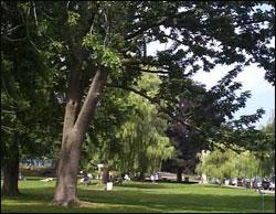 salem-willows-waterfront-park-massachusetts