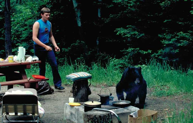 Georgia Woods Food Service