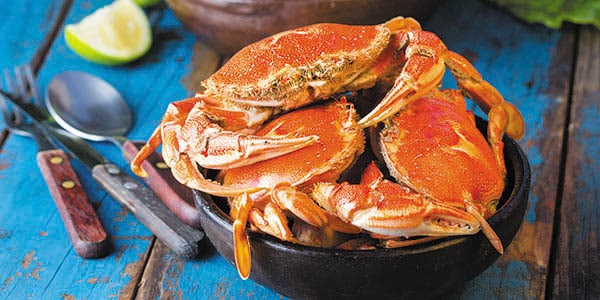 Three red crabs in a black pot on a blue table.