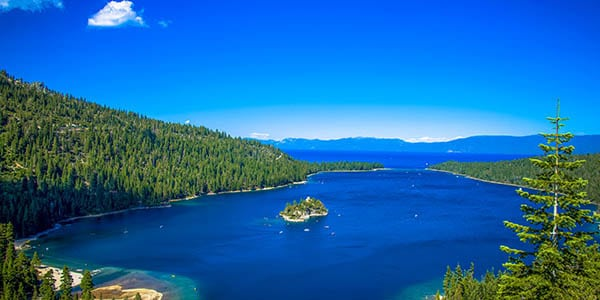 A tiny island in the middle of a cove in Lake Tahoe.