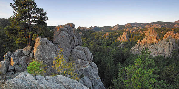 Rugged rock outcroppings surrounded by lush green trees.