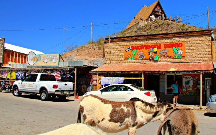 Start your trip on the longest stretch of the original Mother Road with a visit to Oatman. © Rex Vogel, all rights reserved