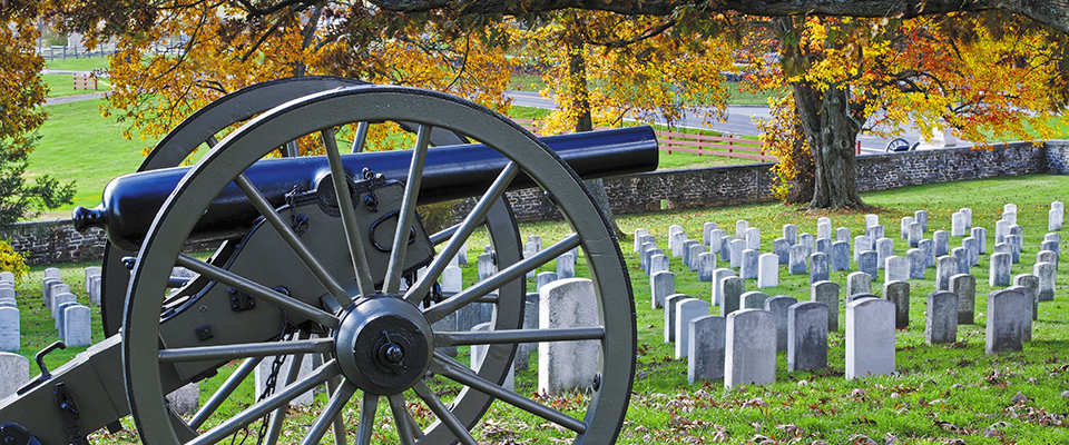 Cannon in cemetary