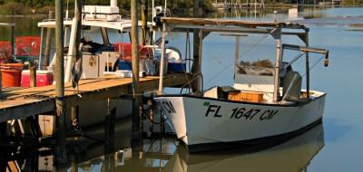 Enjoying Cedar Key, Florida. Note the Great blue heron. © Rex Vogel, all rights reserved