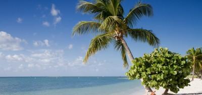 Brighton RV Resort, FL
