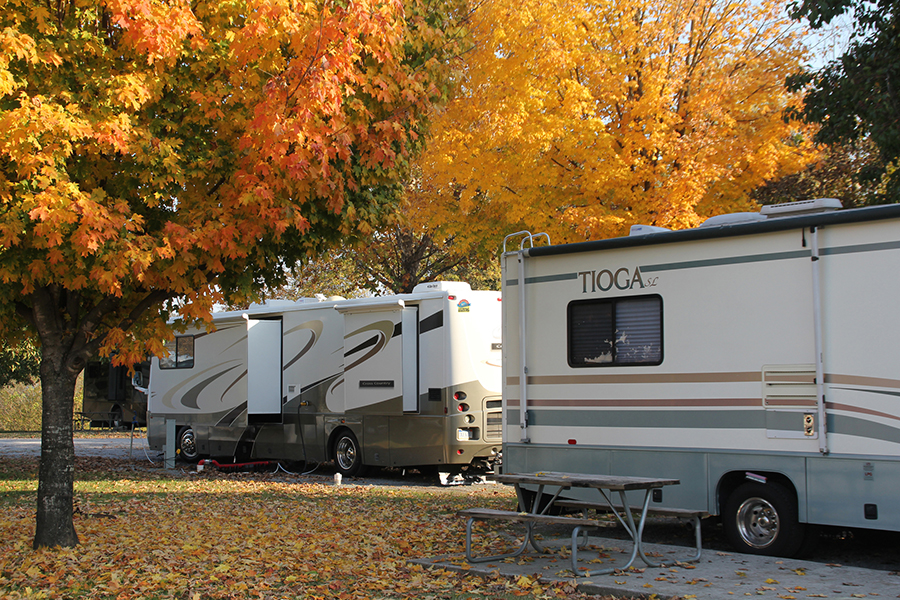 Two RVs parked in campground with fall colored trees and orange and yellow leaves on the ground