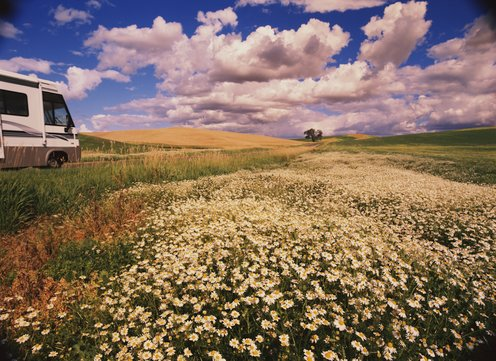 RV parked in field of daisies, Palouse Hills, Washington, USA