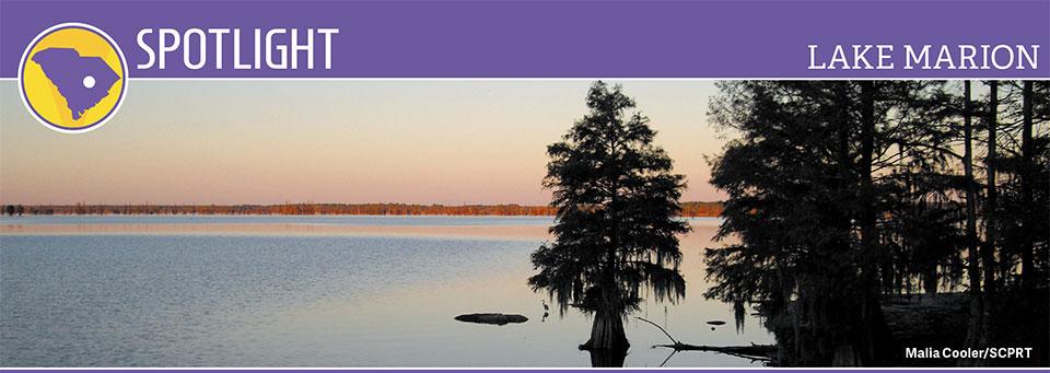 Spotlight: Lake Marion | Good Sam Camping Blog