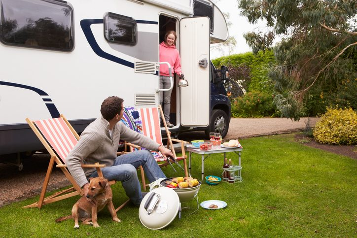 rv pet tips for day trips