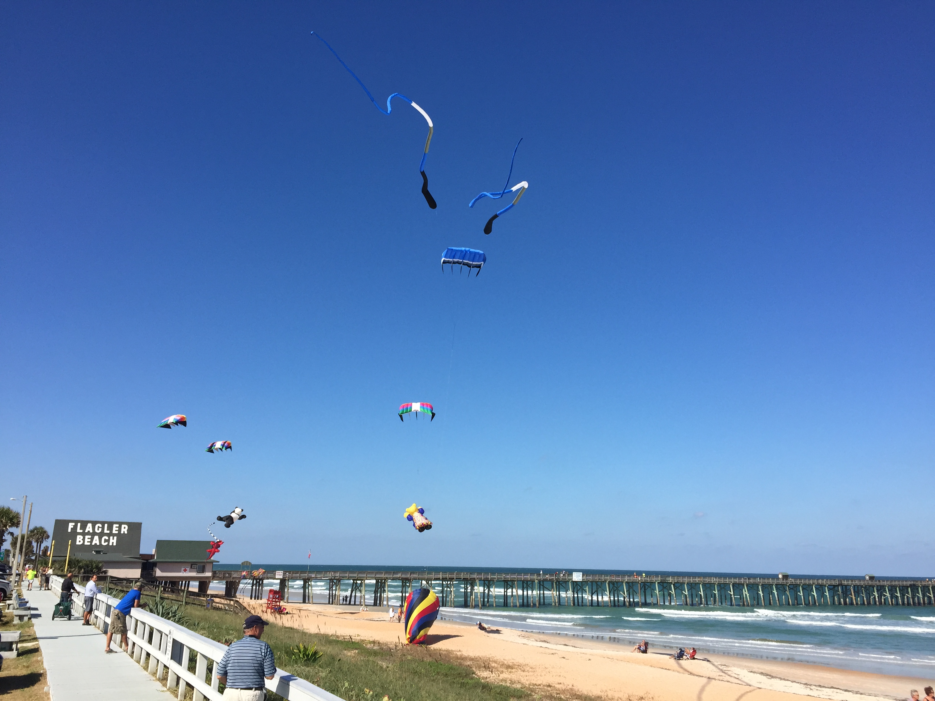 Flagler Beach Kites