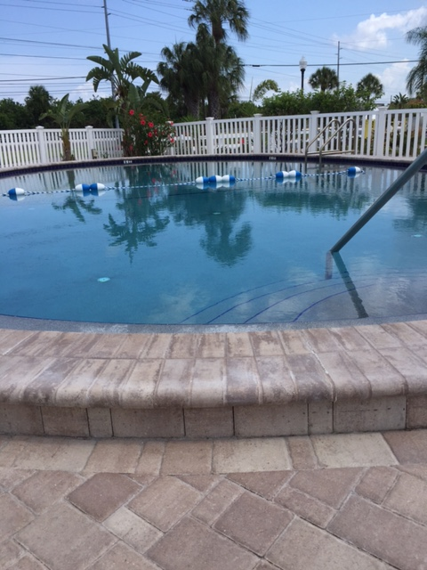 Tampa South RV Resort - pool