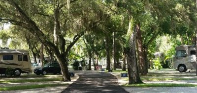 Seminole Campground, Florida - avenue of trees