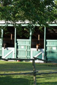 Artillery Ridge Campground & Gettysburg Horse Park - stalls