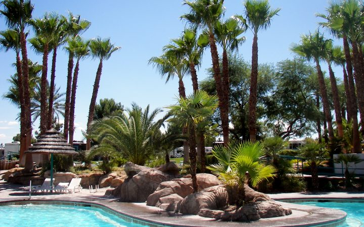Oasis Las Vegas RV Resort - pool