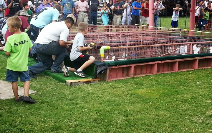 Deming Duck Races