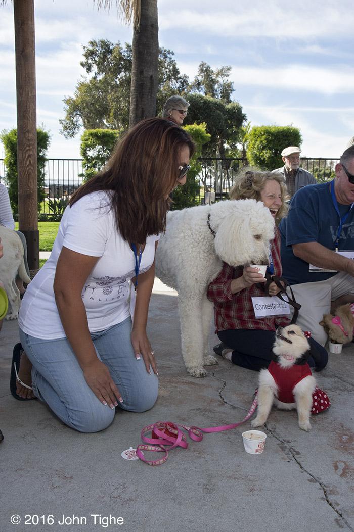 Chula Vista RV Resort - Dog Friendly