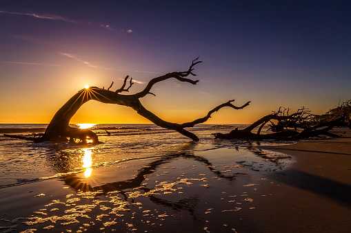 Discover The Golden Isles Of Georgia Good Sam Camping Blog