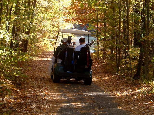Quail Creek RV Resort - Golf car in woods