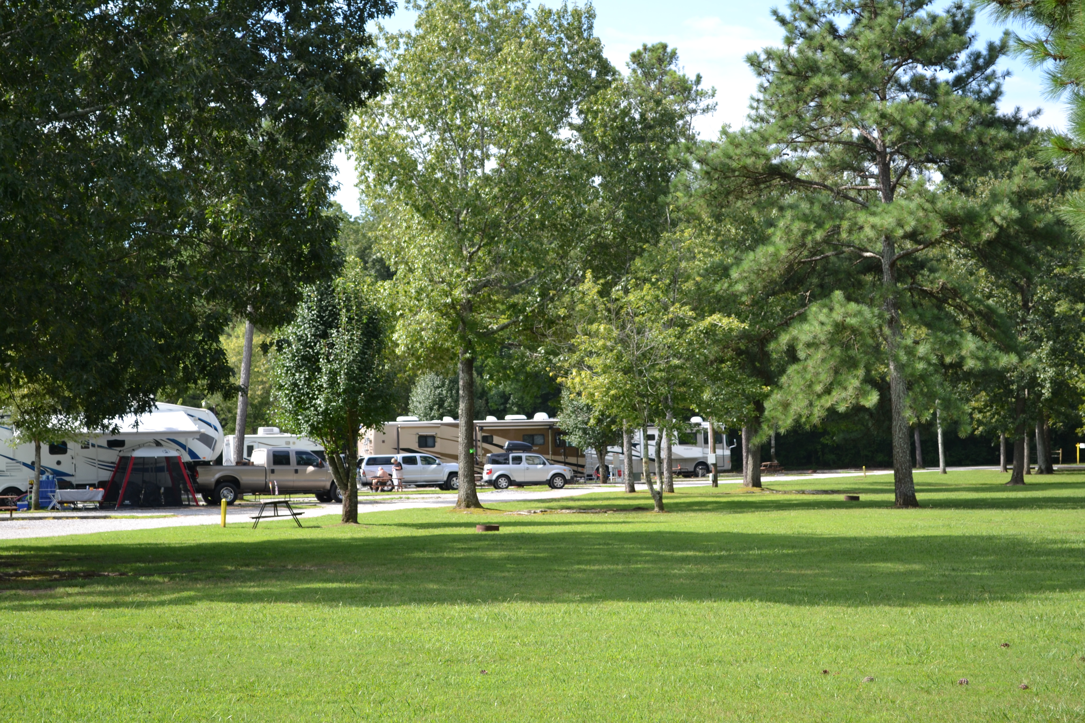 Chattanooga Holiday Travel Park - landscape with RVs