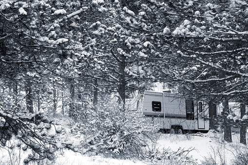 Winter Camping in Pike National Forest