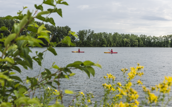 Soaring Eagle Hideaway RV Park - kayaks on lake