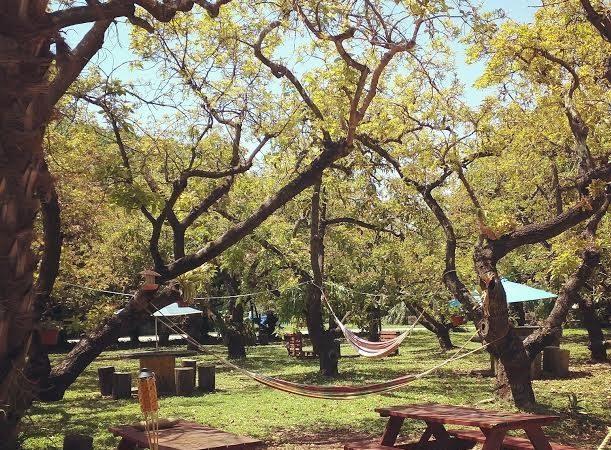 Boardwalk RV Resort - picnic tables