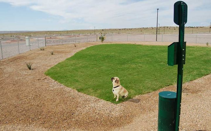 Route 66 RV Resort - dog park