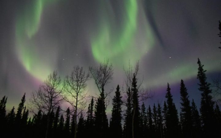 Tok RV Village & Cabins - northern lights