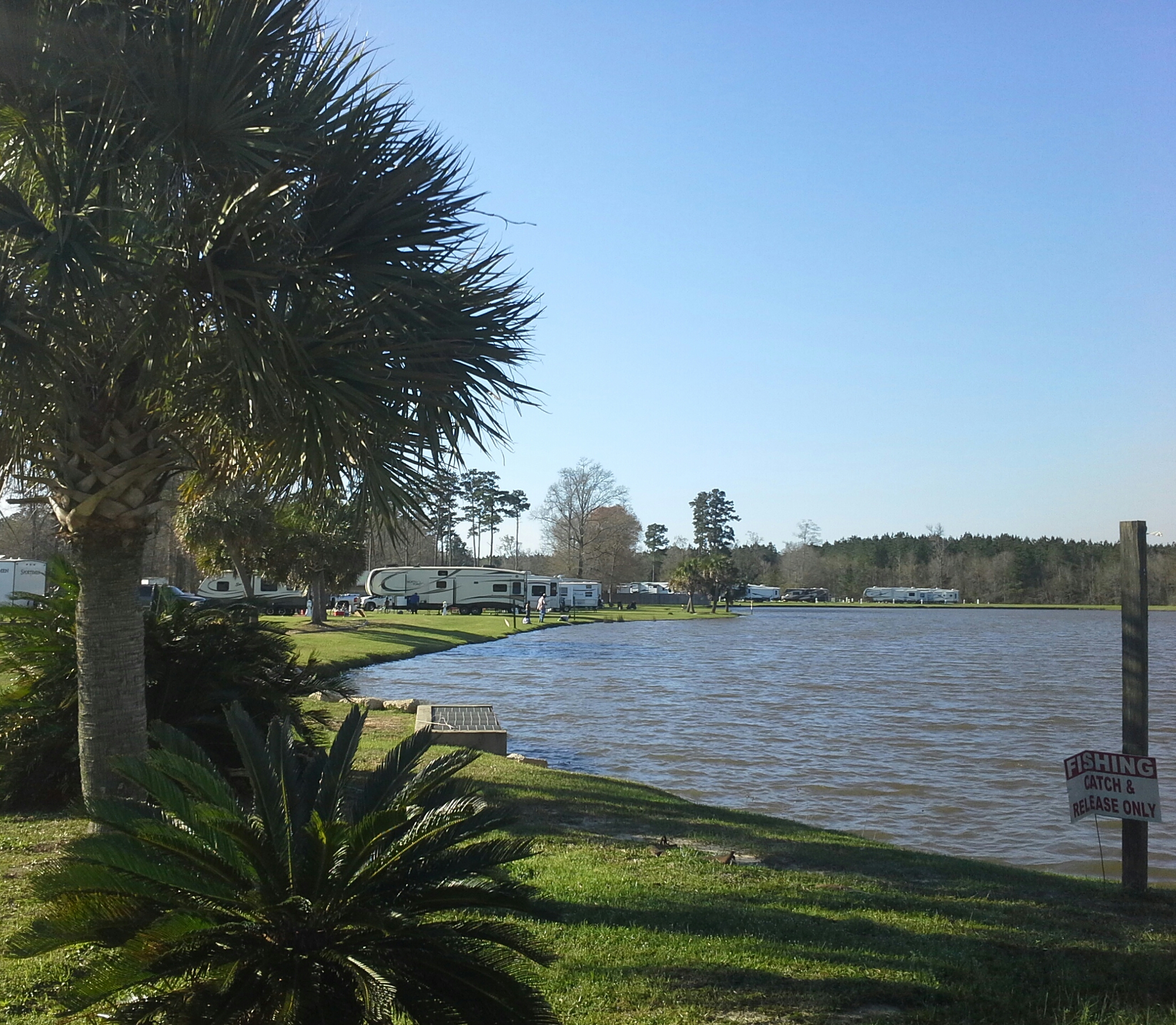 Natalbany Creek RV Park and Campground lake with RVs on sunny day