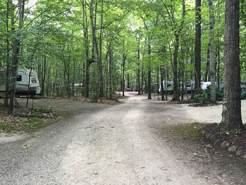 Quietwoods South Camping Resort - wooded RV sites