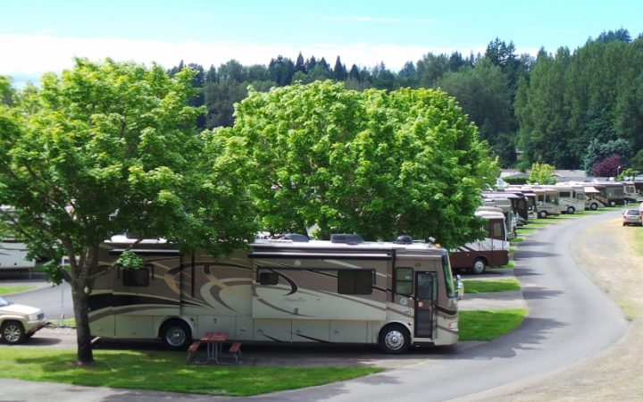 Brookhollow RV Park - RV sites