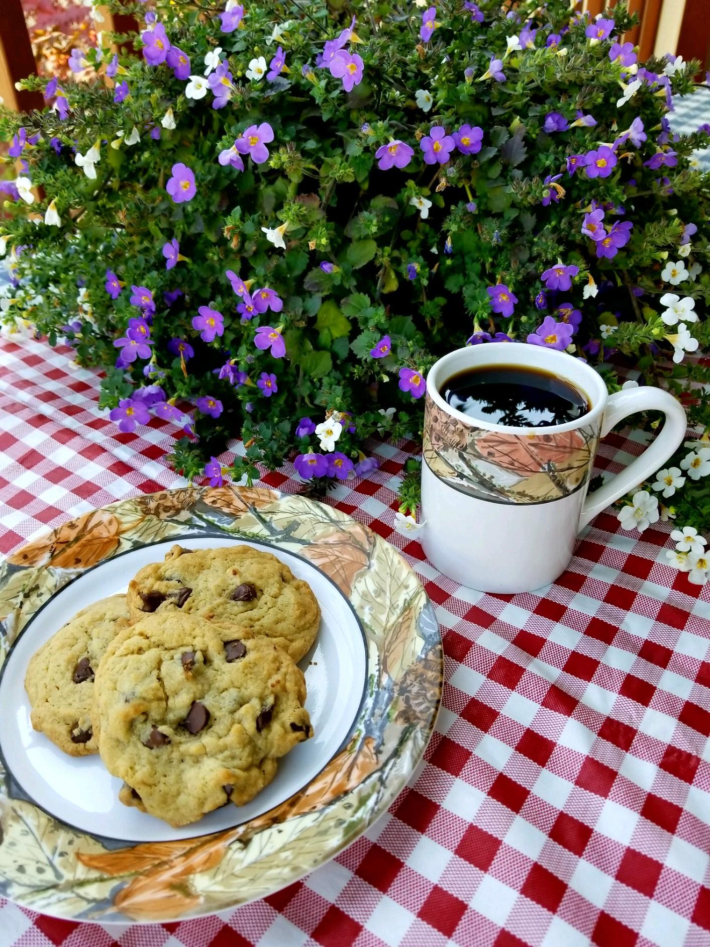 Elma RV Park - Freshly prepared cookies and drinks