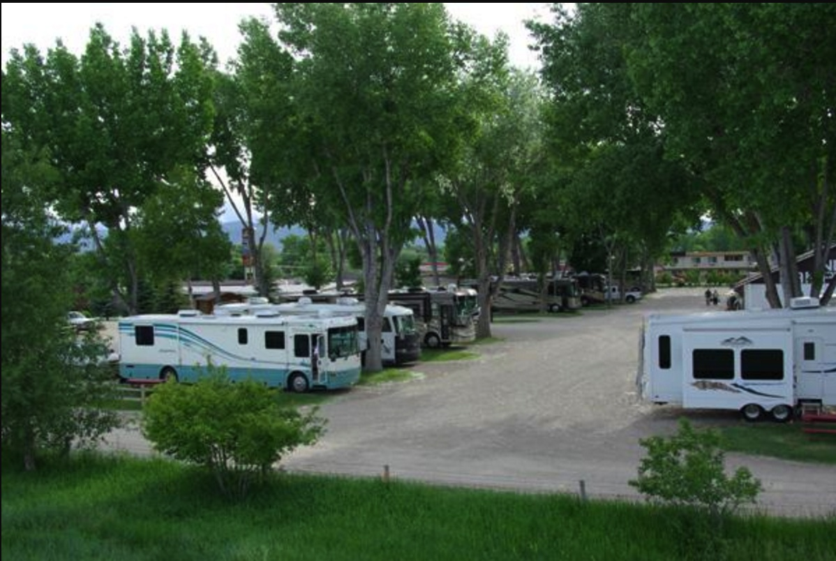 RV park with several motorhomes parked with green bushy trees surrounding