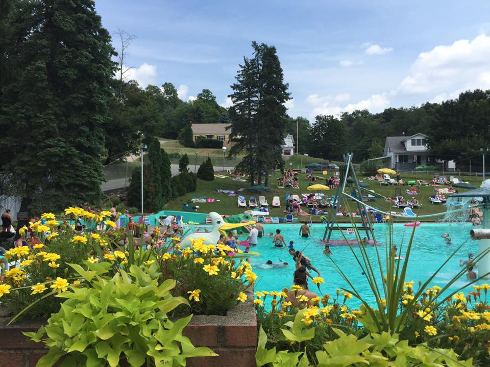 Crowded pool at RV park with flowers in foreground on sunny day