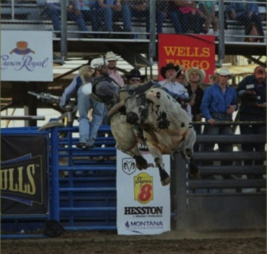 Absaroka Bay RV Park - rodeo