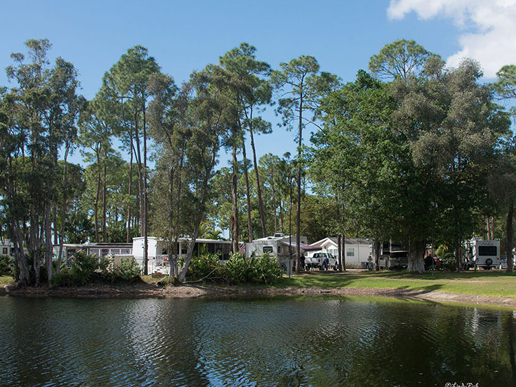 A view of a campground across a pond.