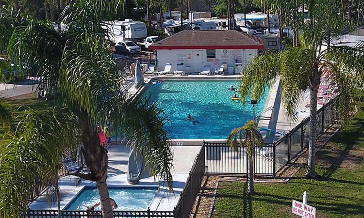 Woodsmoke Camping Resort 50 Years An aerial shot of a pool with palm trees.