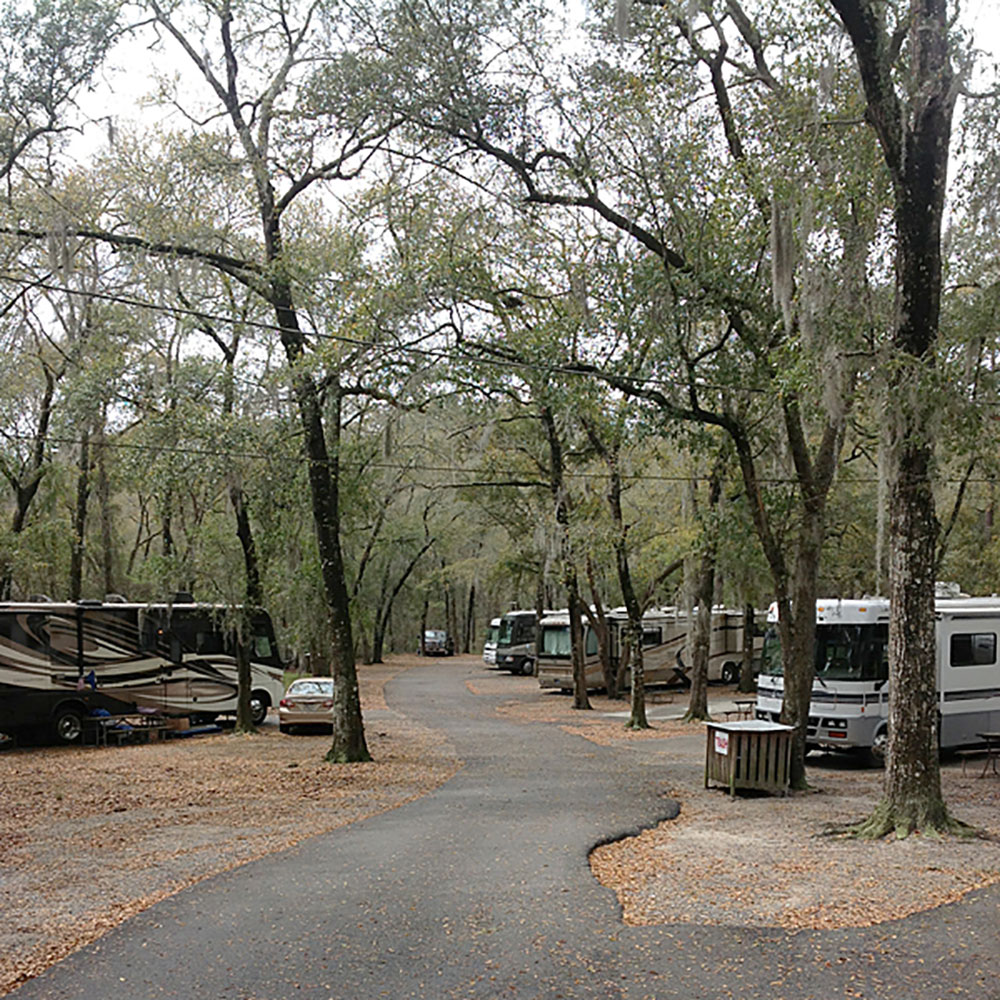 Holiday Acres Camping Resort: Savannah Oaks RV Resort Offers 24 Acres Of Magnificent