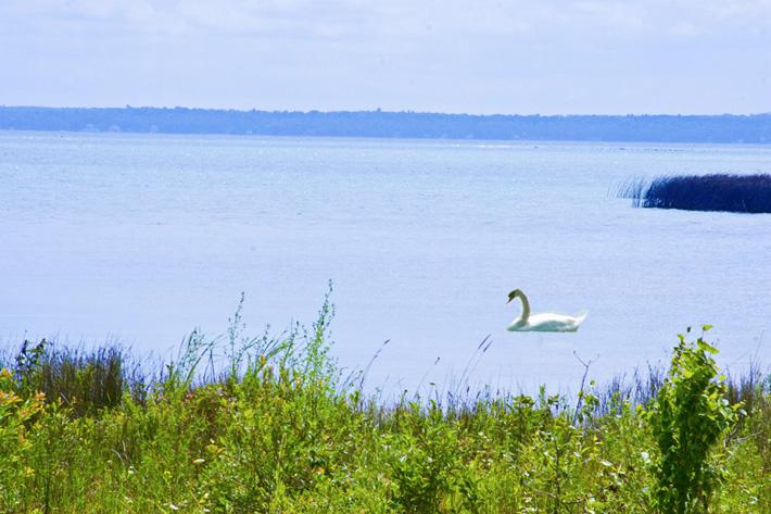 Castle Rock Lakefront Campground - Lake Michigan