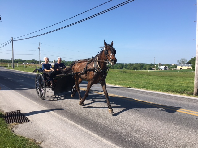 Flory S Cottages Amp Camping Where The Amish Are Our