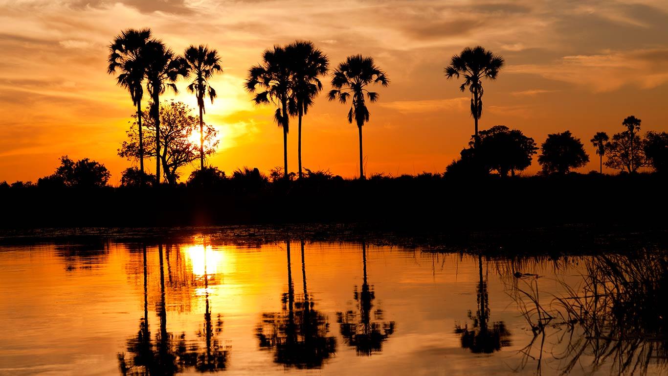 bentsen palm village