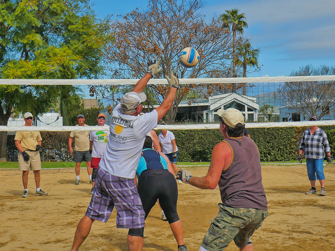 Sunland - Golden Village Palms - volleyball