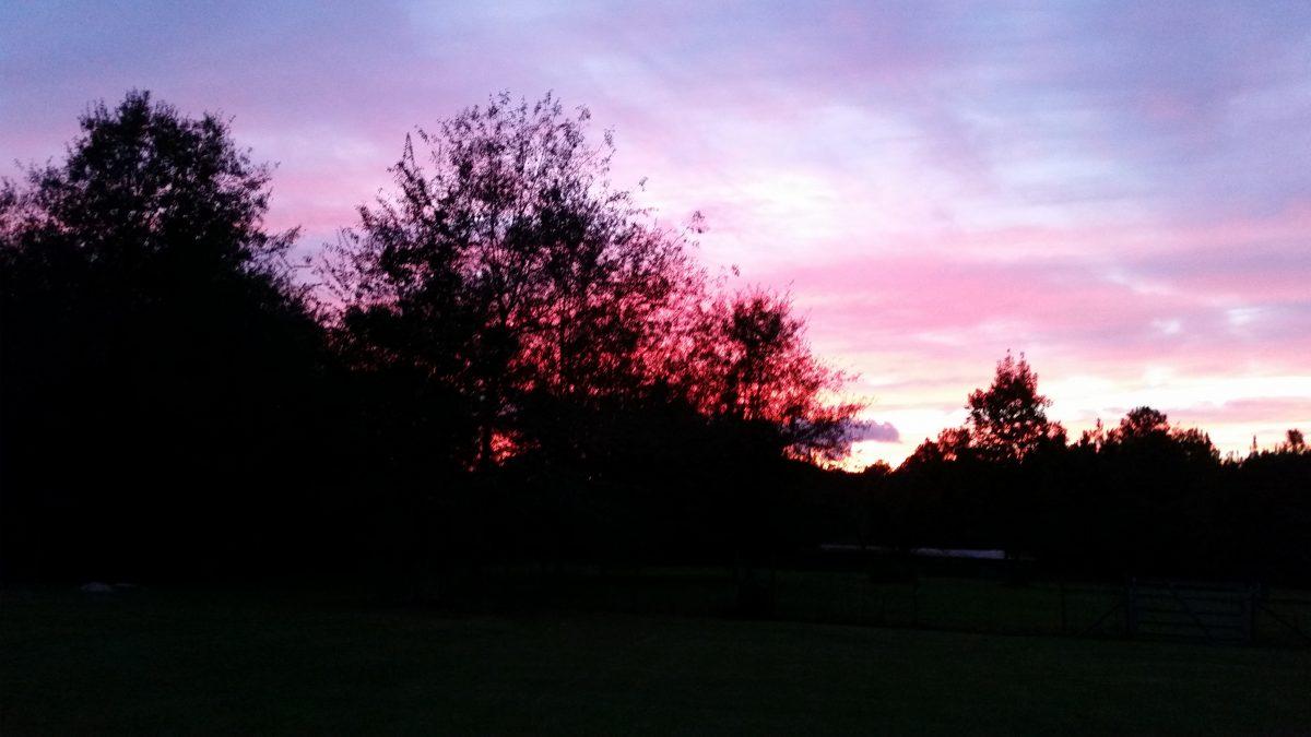 Azalea Acres RV Park - sunset