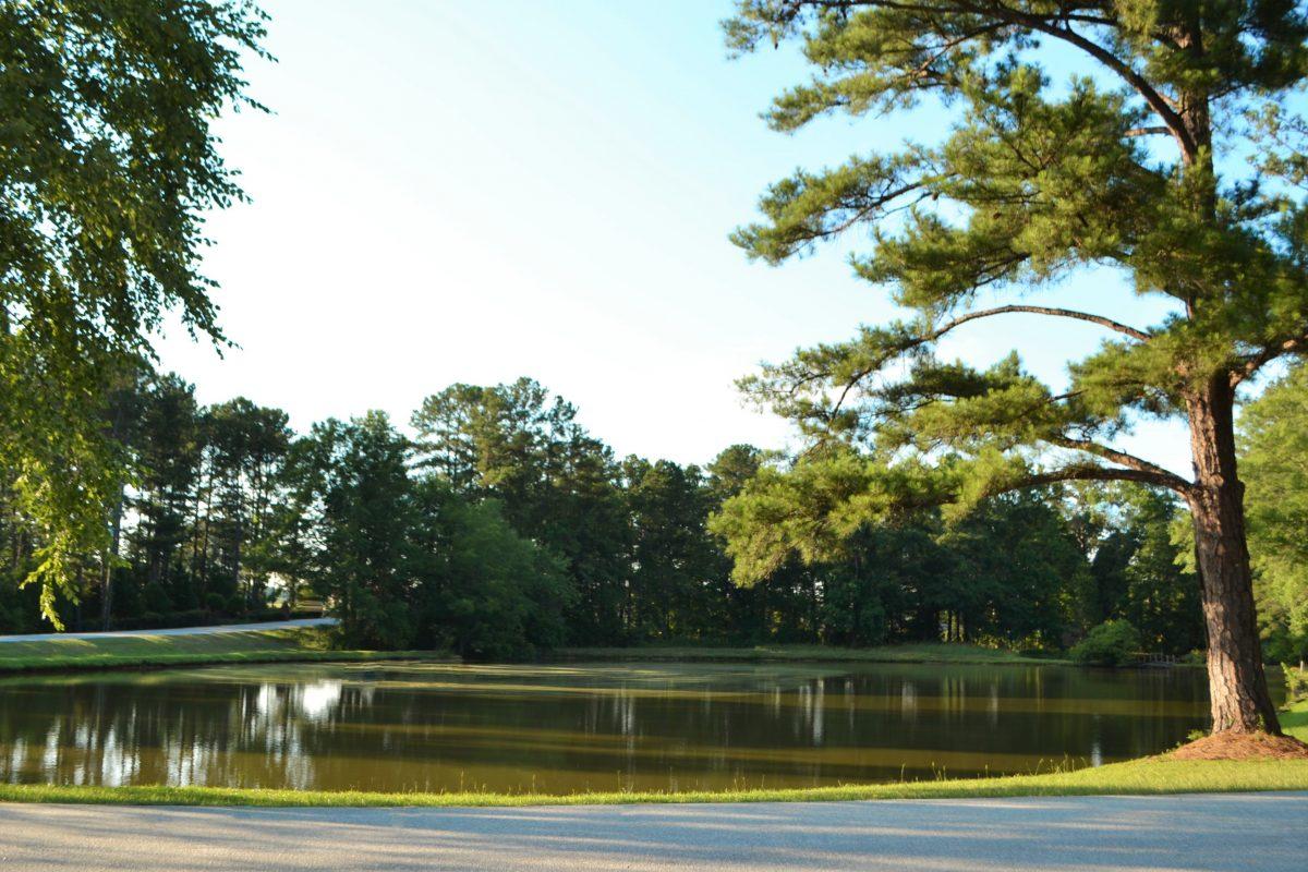 Lake Pines RV Park & Campground - lake