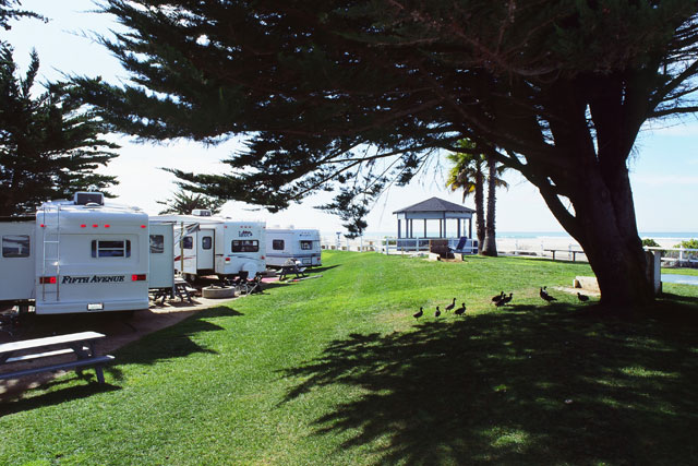 Pismo Coast Village RV Resort - sites by the beach