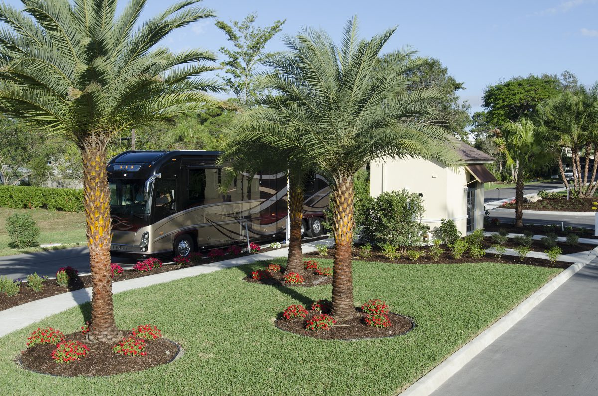 Cypress Trail RV Resort - back in site
