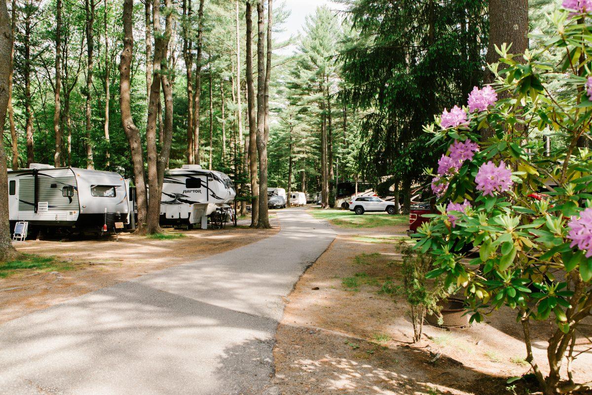 Wild Duck Adult Campground & RV Park - rv sites