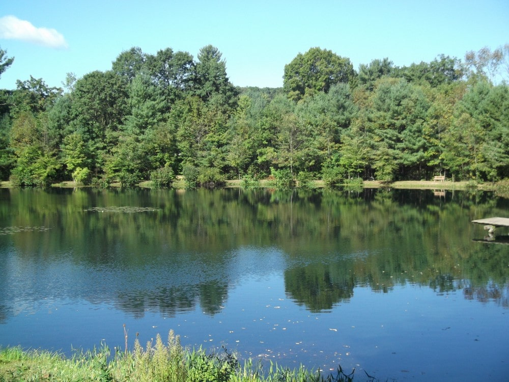 Woodland Campground